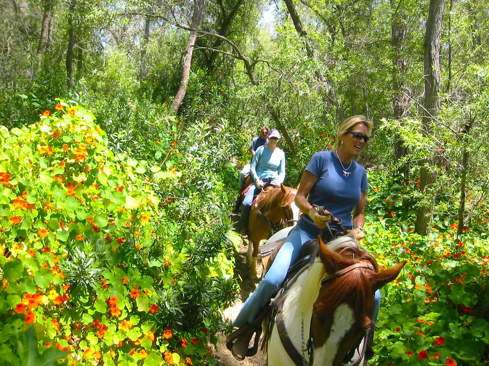 Best 10 Horseback Riding San Diego, CA